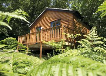 Woodland-Lodges